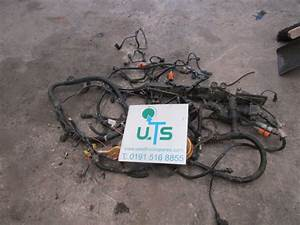 Man Tgs    Tgx D2066 Full Engine Wiring Harness