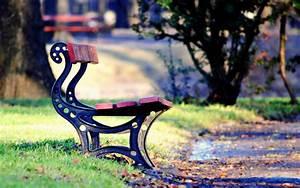 mood bench bench lava shop park square leaves leaf grass ...