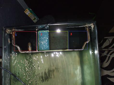 mon aquarium 250 litres et ses debuts