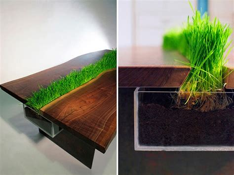 cat friendly table with built in grass planter freshome