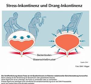 harninkontinenz frauen