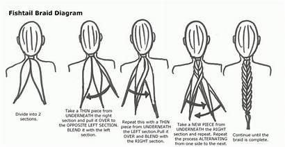 Fishtail Braid Step Instructions Hair Fish Plait