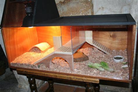 bureau de change chichester le pour terrarium tortue 28 images exemple terrarium