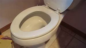 Diy 101 How To Remove  U0026 Replace A Toilet Seat