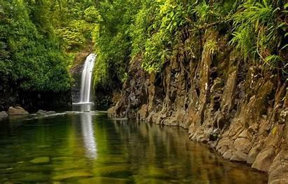 Fiji Island Taveuni Waterfall Forest Desktop Section