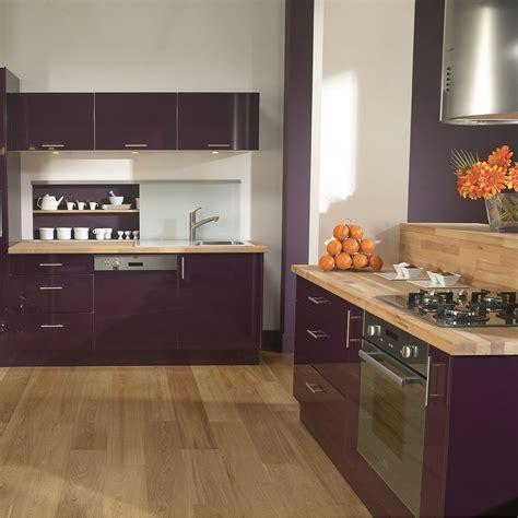 meuble de cuisine aubergine cuisine violette pas cher sur cuisine lareduc com