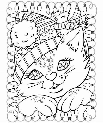 Coloring Winter Cat Pages Cardinal Printable