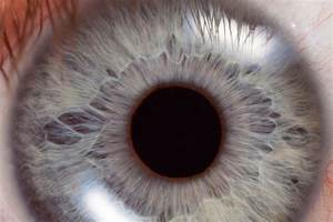 Corneal Abrasion  U2013 Eye Injury Causes And Symptoms