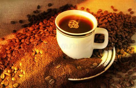 The Evolution Of Coffee Royalty Free Stock Photography Irish Coffee No Sugar Meets Bagel Go Back Jacobs Login Or Bumble Ingredienten Orange Heart Glass Mugs