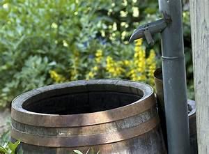 Regenwasser Zu Trinkwasser Aufbereiten : regenwasser sammeln der schatz in ihrem garten garten ~ Watch28wear.com Haus und Dekorationen