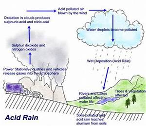 Going Green: Acid Rain