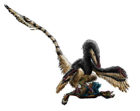 Wiki: Velociraptor - upcScavenger