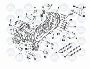 Qmb139 Crankcase Parts  Category For All Chinese 50cc 49cc Scooter Motor Parts  Large Selection