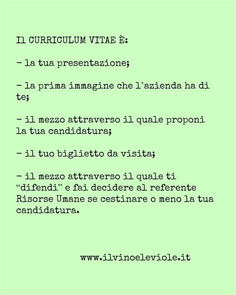 Cv Proforma by Frase Curriculum Vitae Mc Informatica