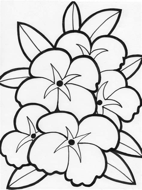 free printable flower coloring pages for kids best
