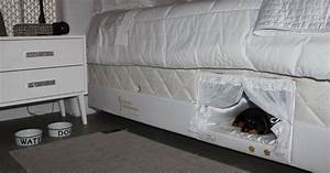 This bed has a tiny compartment for your pet so that you for Dog bed inside mattress
