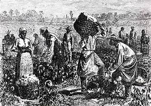 Plantation Slaves: Slavery on Plantations