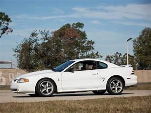 The 1995 Mustang SVT Cobra R is a track hero, but not an auction star | Hagerty Media