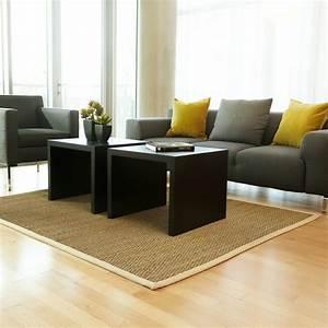 le tapis jonc de mer pour le salon classique en 60 belles With tapis jonc de mer avec canape cuir metal