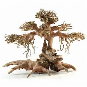 Aquascaping BONSAI Driftwood - Nature Aquarium Goods