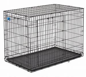 top paw double door wire dog crate only 6999 best With best price on dog crates