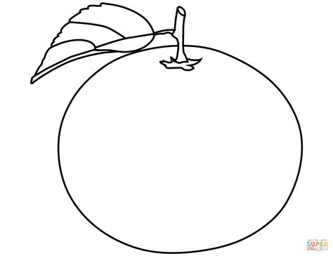 Coloring Oranges by Orange Coloring Page Free Printable Coloring Pages