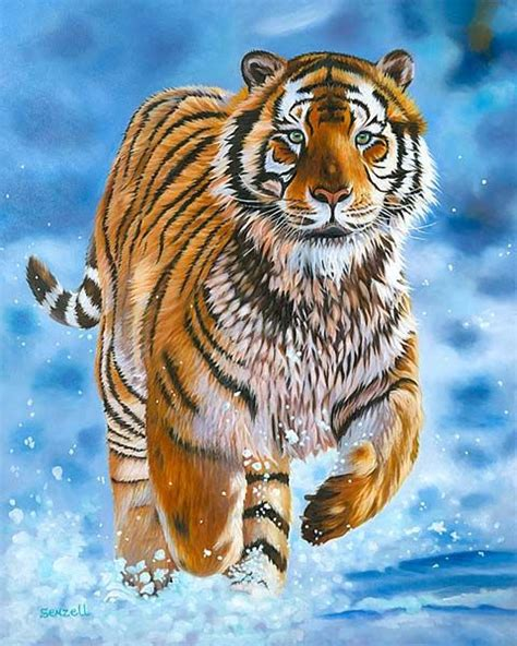 They Are Beautiful Animals Tiger Pictures