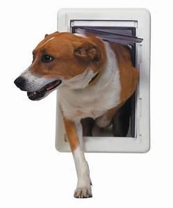 dog door With how to make a dog door