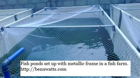 high quality reinforced tarpaulin  mobile fish pond