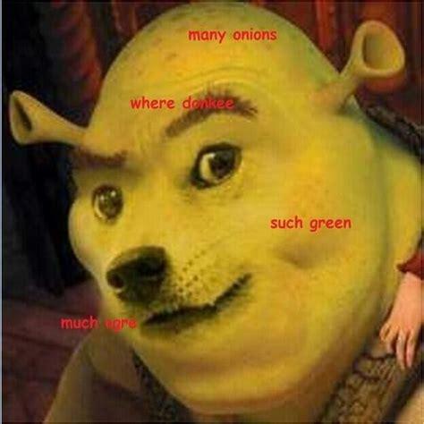 Shibe Meme Maker - shrek doge doge meme dog memes pinterest doge doge meme and aesthetic art