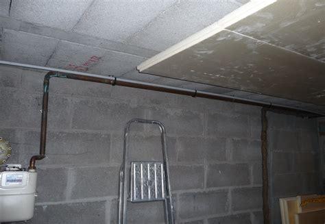 elevage de reines au plafond comment cacher tuyau au plafond