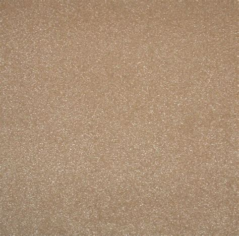 Trafficmaster Carpet Tile Canada by Trafficmaster 19 69 Inch X19 69 Inch Taupe Vision Carpet