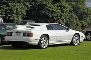 Lotus Esprit Turbo : auction results and data for 1994 lotus esprit turbo turbo v 8 turbo se conceptcarz ~ Medecine-chirurgie-esthetiques.com Avis de Voitures