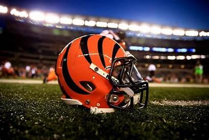 Bengals Cincinnati Bengal Outlook Football Agency Ourlads