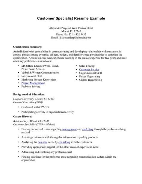 Professional Resume Summary by Professional Summary Resume Exles Customer Service