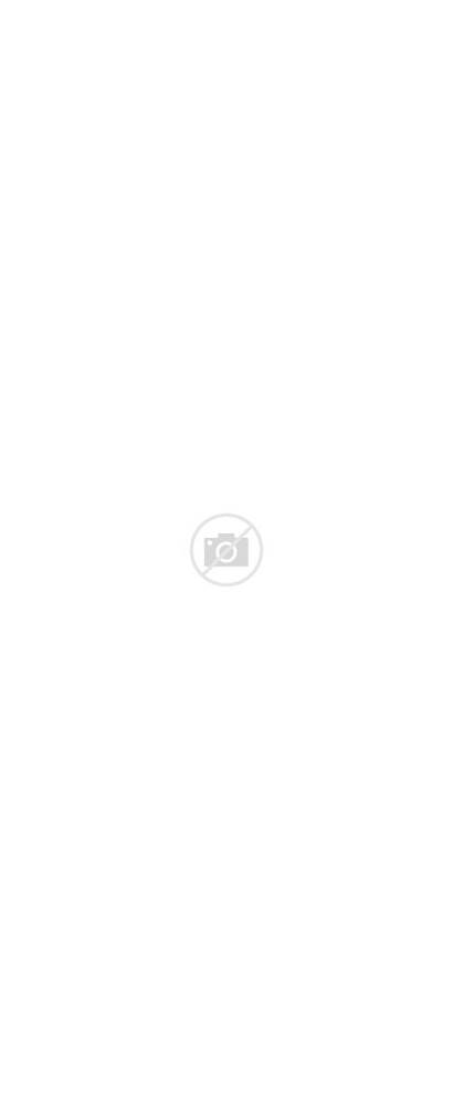Carne Trinche Capital