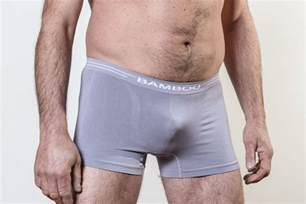 Men's Bamboo Briefs Underwear