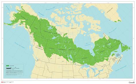 Forêt Boréale Ressources Naturelles Canada