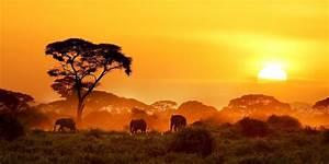 Afrika, In, Bildern