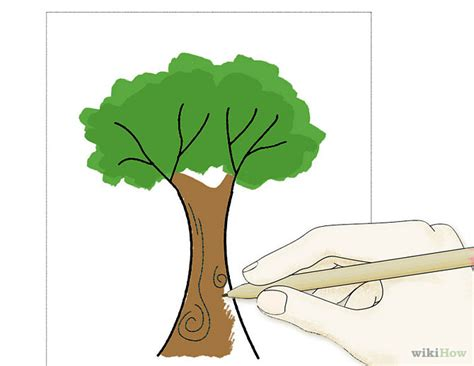 realistic apple tree drawing how to draw a apple tree clipart best