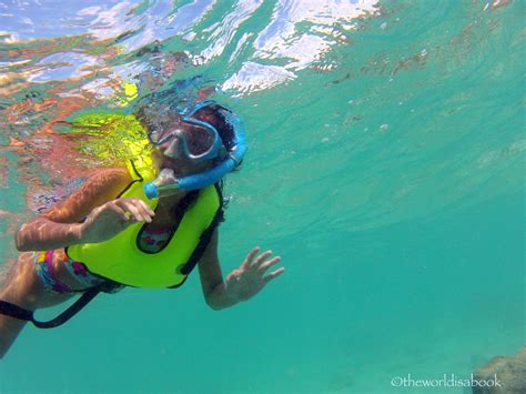 swimming with the fishes snorkeling at hanauma bay oahu the world is a book