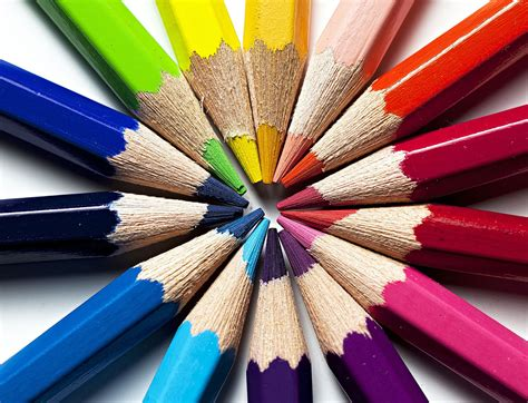Coloring With Colored Pencils by Learn How To Draw Flowers With These Step By Step