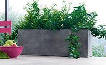bacs pour plantes exterieur