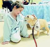 Service Dogs In Hospitals Images