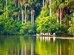 Tour Tambopata Y Lago Sandoval - 4d  3n