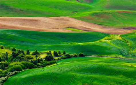 wallpaper green landscape hd nature