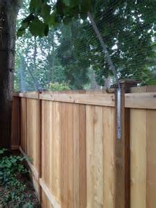 cat proof fence cat fence on fencing cat enclosure and cats