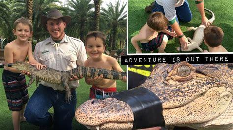 alligators facts  kids  gatorland youtube