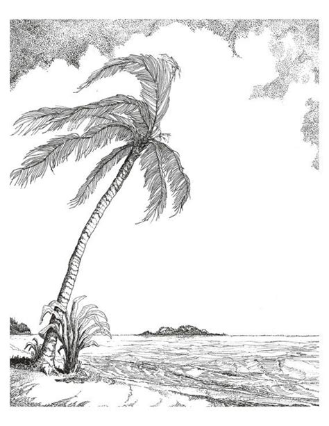 breezy palm tree  black ink drawing  white