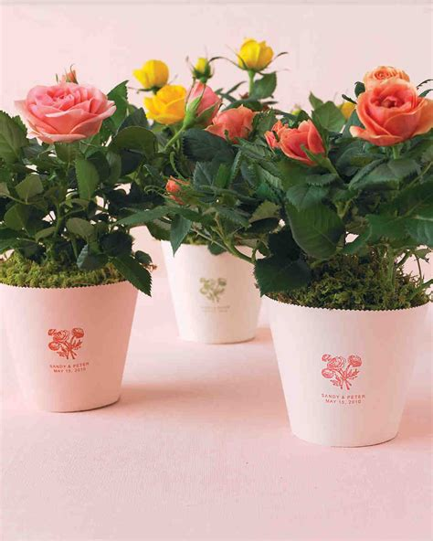 flower  plant wedding favor ideas grow